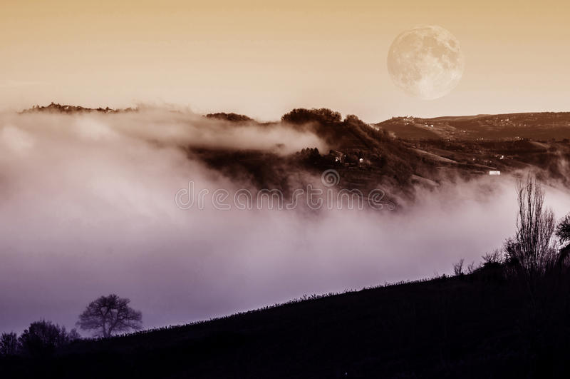 Fantasy scenery in the fog stock photos