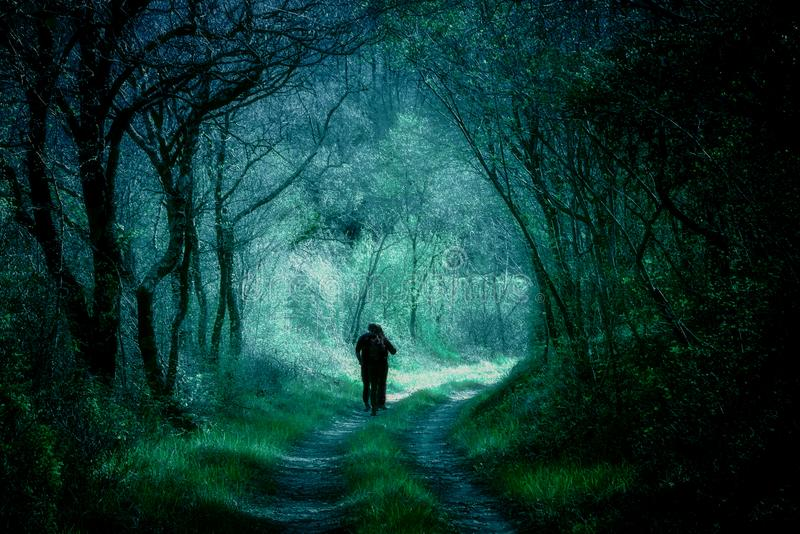 Silhouette Of Man In Dark Haunted Scary Forest On