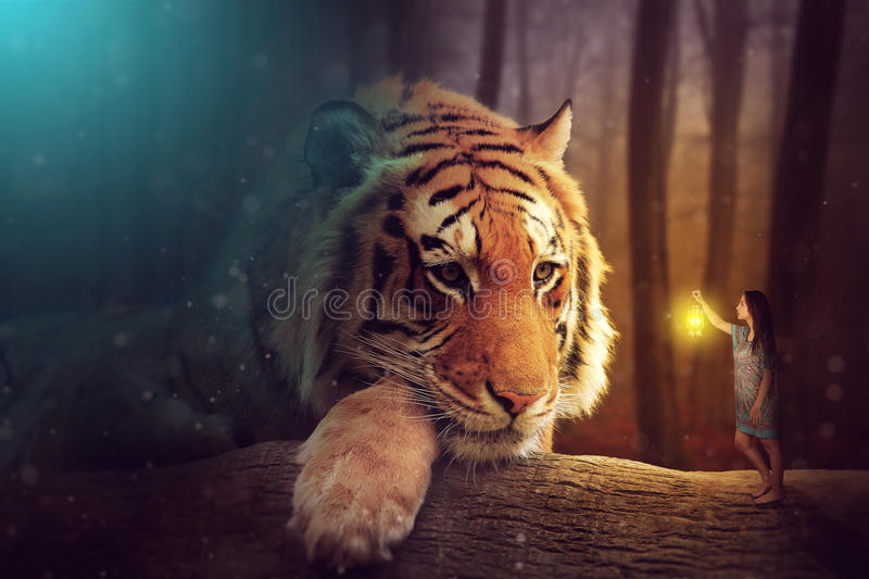 A fantasy world - a woman and a giant tiger royalty free stock photography