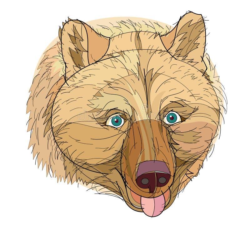 Fantazi ilustracja głowa śliczny brown niedźwiedź na białym tle Pociągany ręcznie wektorowy wizerunek ilustracja wektor