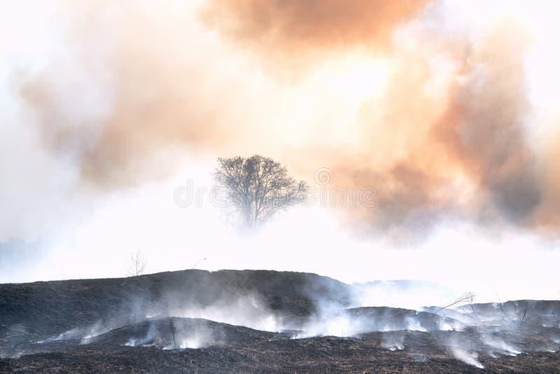 Fantazja powierzchnia inna planeta z ziemią i dym z widokiem księżyc przypalającą i przypalającą obraz royalty free