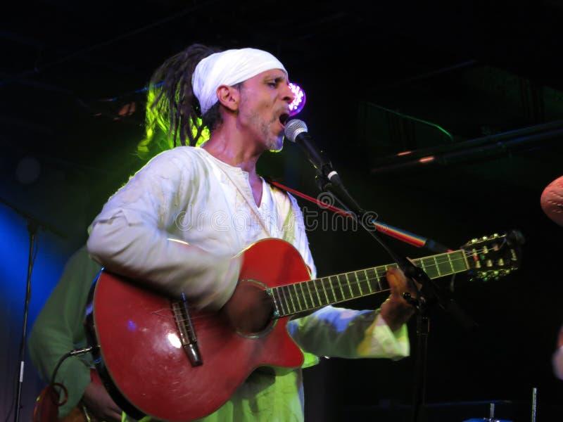 Fantuzzi śpiewa gitarę i bawić się przy rozdrożami obraz royalty free