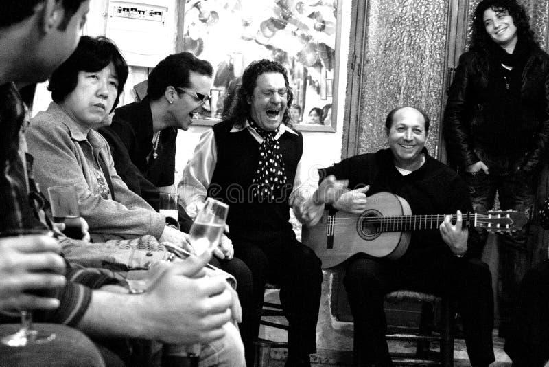 Fany flamenco fotografia stock