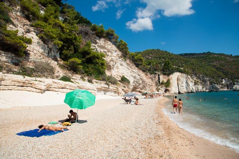 Faraglioni et la côte de plage de Mergoli, Vieste Gargano, Pouilles, Italie. l'europe images libres de droits