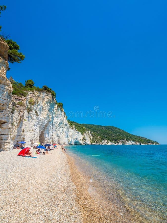 Faraglioni stacks and beach coast of Baia Delle Zagare, Gargano, Apulia, Italy royalty free stock photos