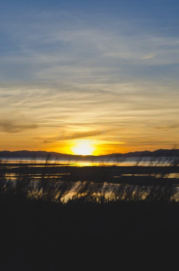 Farba jak zmierzch za długą trawą przy wielkim słonym jeziorem zdjęcie royalty free