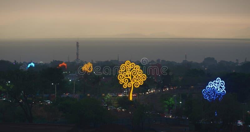 Farbbäume in Managua-Straße lizenzfreies stockbild