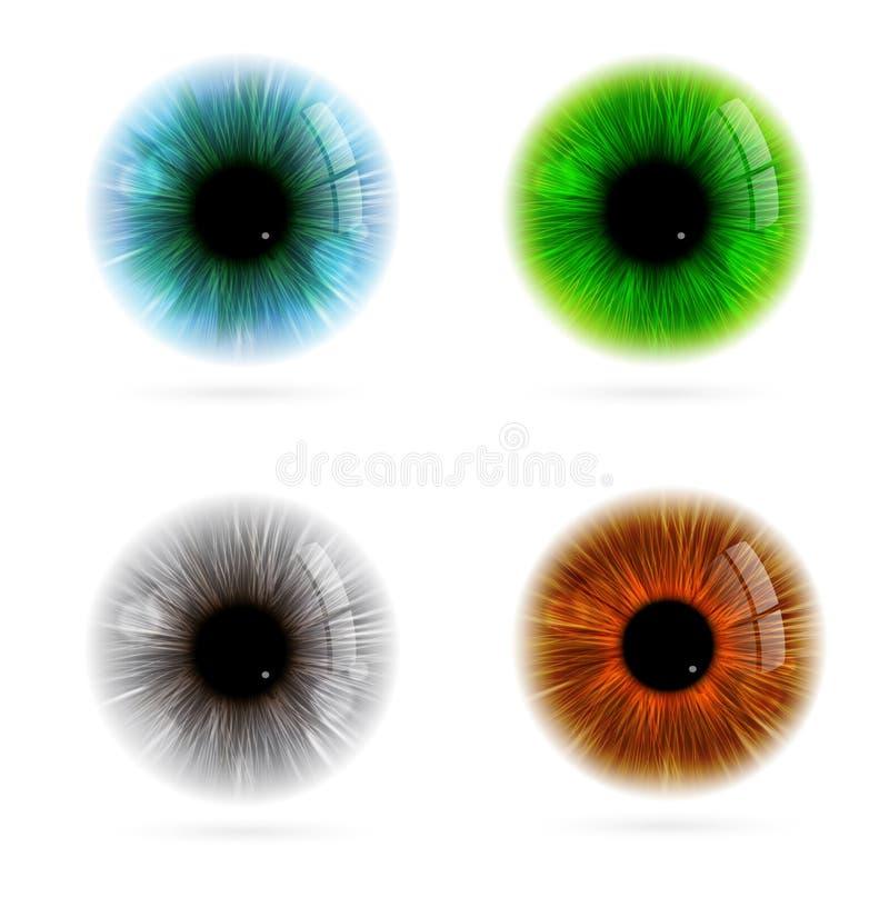 Farbe des menschlichen Auges stock abbildung