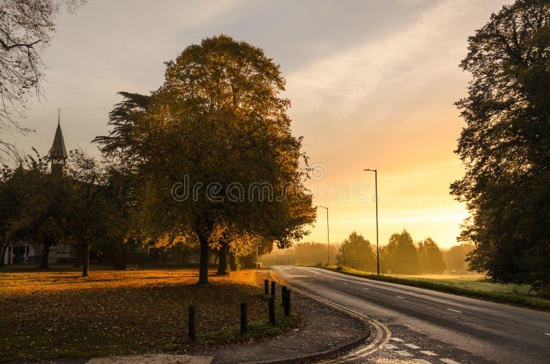 Farben des Herbstes und der leeren Straße stockfotos