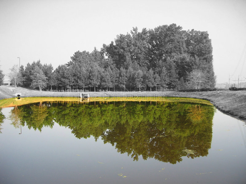 Farben-Reflexion stockbilder