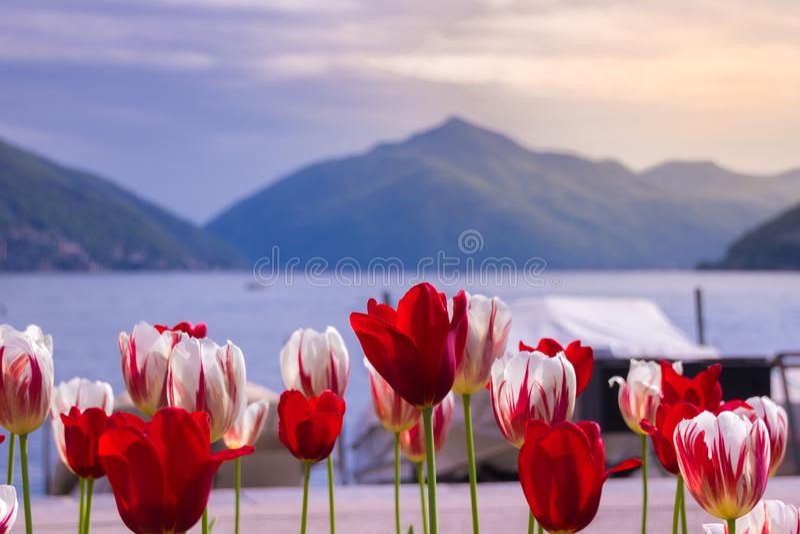 Farben von Lugano lizenzfreie stockfotos