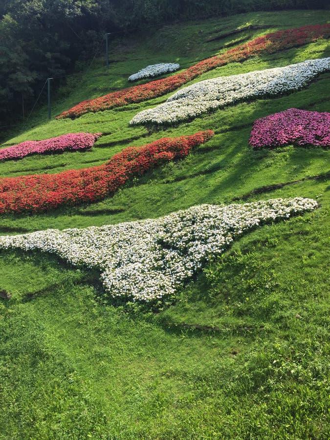 Farbenfrohe Landschaft in der Natur stock fotografie