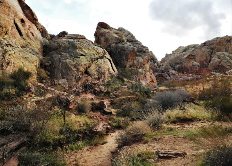 Farbenfrohe Sandstone Rock Dome Formationen im Tal des Feuers lizenzfreies stockbild