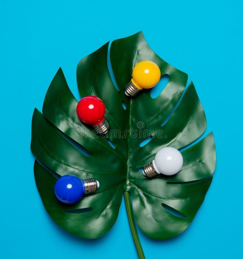 Farbige Glühlampen und grünes Palmblatt lizenzfreies stockbild