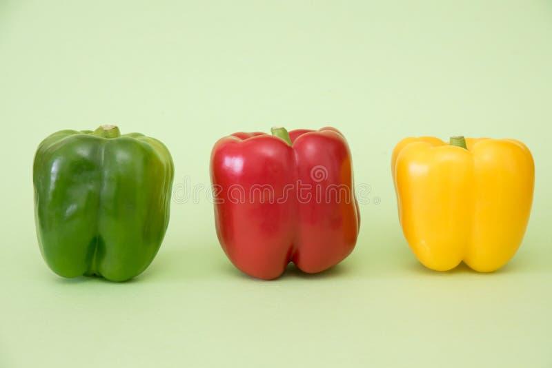 Farbige Paprika auf grünem Hintergrund stockfoto