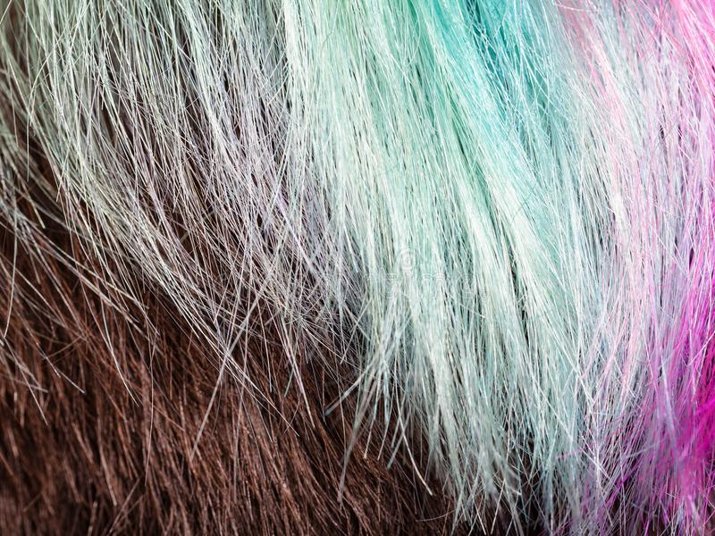 Farbige Stränge von weiblichen Haaren lizenzfreies stockfoto