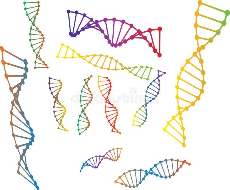 Farbige vektorabbildung des DNA-Baumusters lizenzfreie abbildung