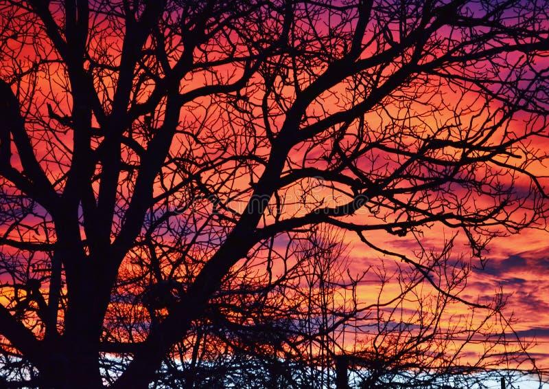 Farbige Wolken stockfoto