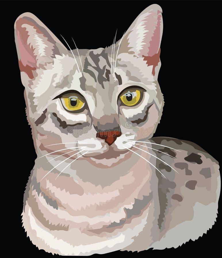 Farbiger Ägypter Mau Cat stock abbildung