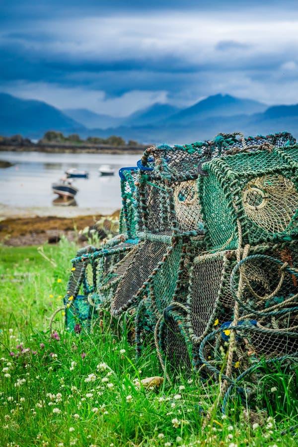 Farbiger Käfig zu anziehendem Hummer auf Ufer, Schottland lizenzfreie stockfotos