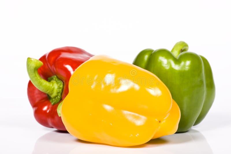Farbiger Paprika lizenzfreies stockbild