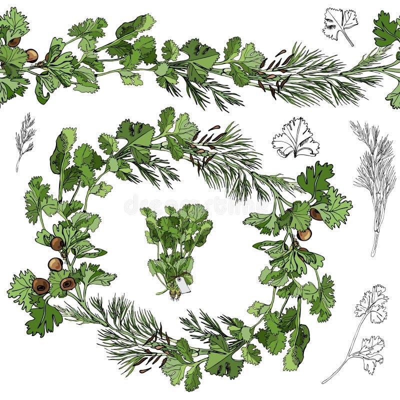 Farbkranz und endlose Bürste mit Farbe und einfarbige Kräuter mit den Blättern und Gewürzen lokalisiert auf weißem Hintergrund stock abbildung