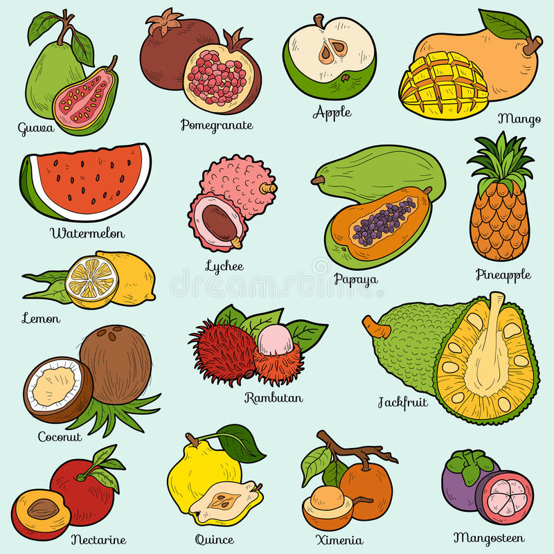 Farbsatz mit tropischen Früchten, Vektorkarikaturaufkleber lizenzfreie abbildung