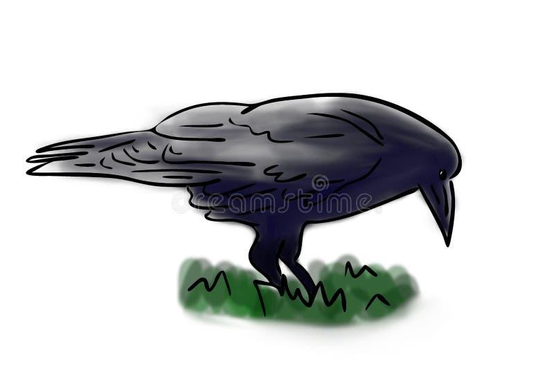 Farbskizze des schwarzen Raben im grünen Gras, handgemalte Zeichnung des Entwurfs lizenzfreie abbildung