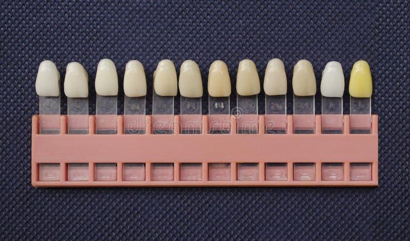 Farbton von Zähnen stockbild