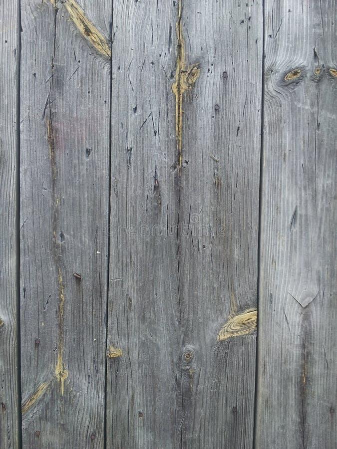 Farby drewna szarość obraz royalty free
