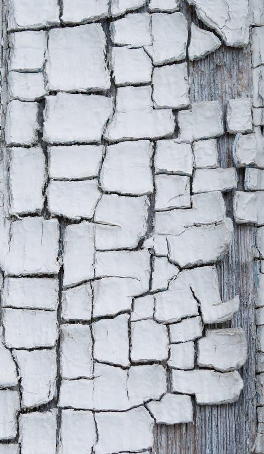 Download Farby stara tekstura obraz stock. Obraz złożonej z antyk - 13328275