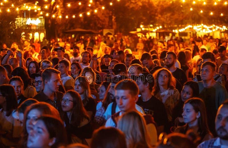 Fare festa della folla di festival di musica di estate all'aperto fotografia stock libera da diritti