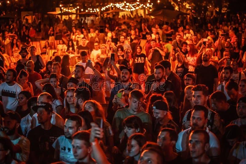 Fare festa della folla di festival di musica di estate all'aperto fotografie stock