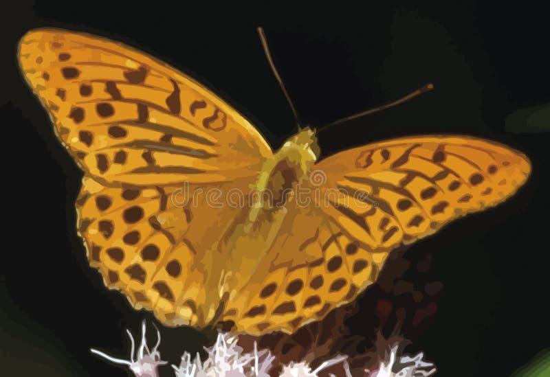 Farfalla alla molla colorata con le grandi ali, disegno indicativo fotografia stock