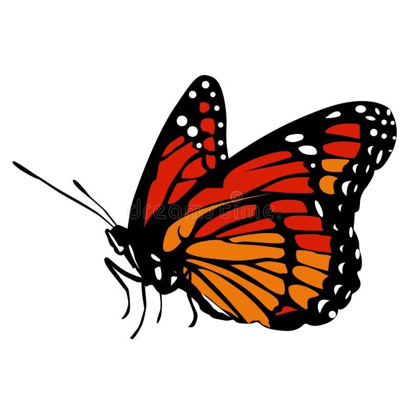 Farfalla arancio nera dell'icona bella e rossa colorata su un bianco royalty illustrazione gratis
