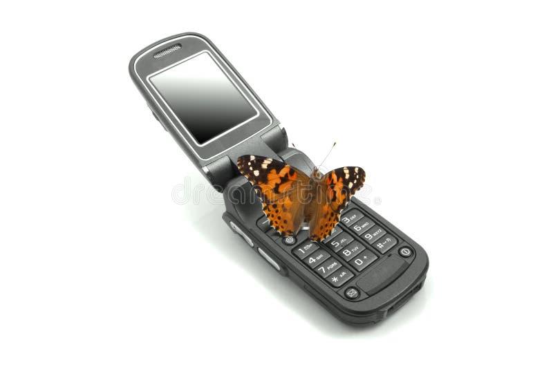 Farfalla che si siede su un telefono mobile immagine stock