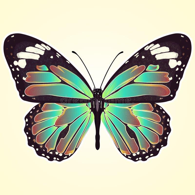 Farfalla con le ali variopinte, vista da sopra, isolate su fondo giallo-chiaro Vector l'illustrazione, l'insegna, la carta, il ma illustrazione vettoriale