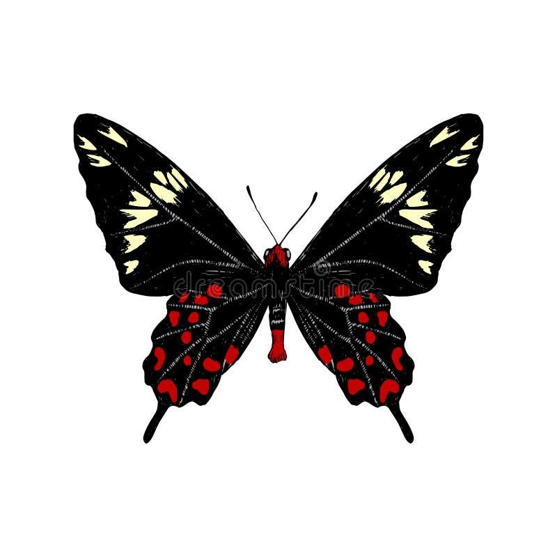 Farfalla cremisi disegnata a mano di Rosa royalty illustrazione gratis