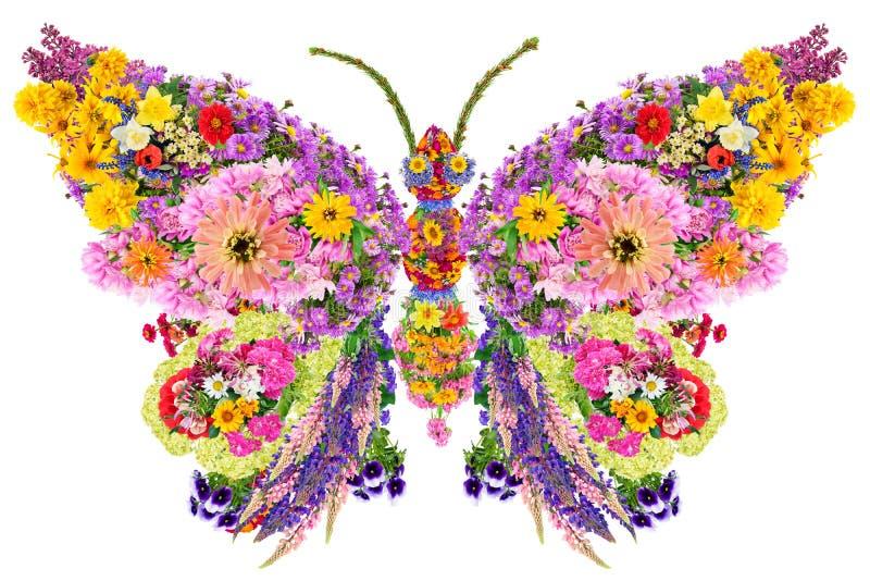 Farfalla dai fiori di estate fotografia stock