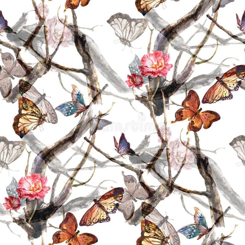 Farfalla della pittura dell'acquerello e fiori, modello senza cuciture su fondo bianco illustrazione vettoriale
