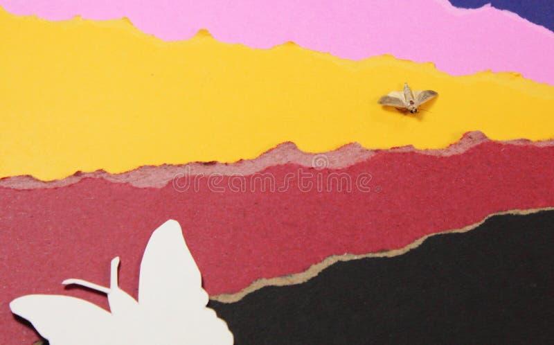 Farfalla di carta ed insetto originale fotografie stock