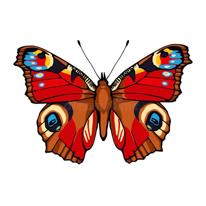 Farfalla di pavone. Illustrazione disegnata a mano di vettore illustrazione di stock