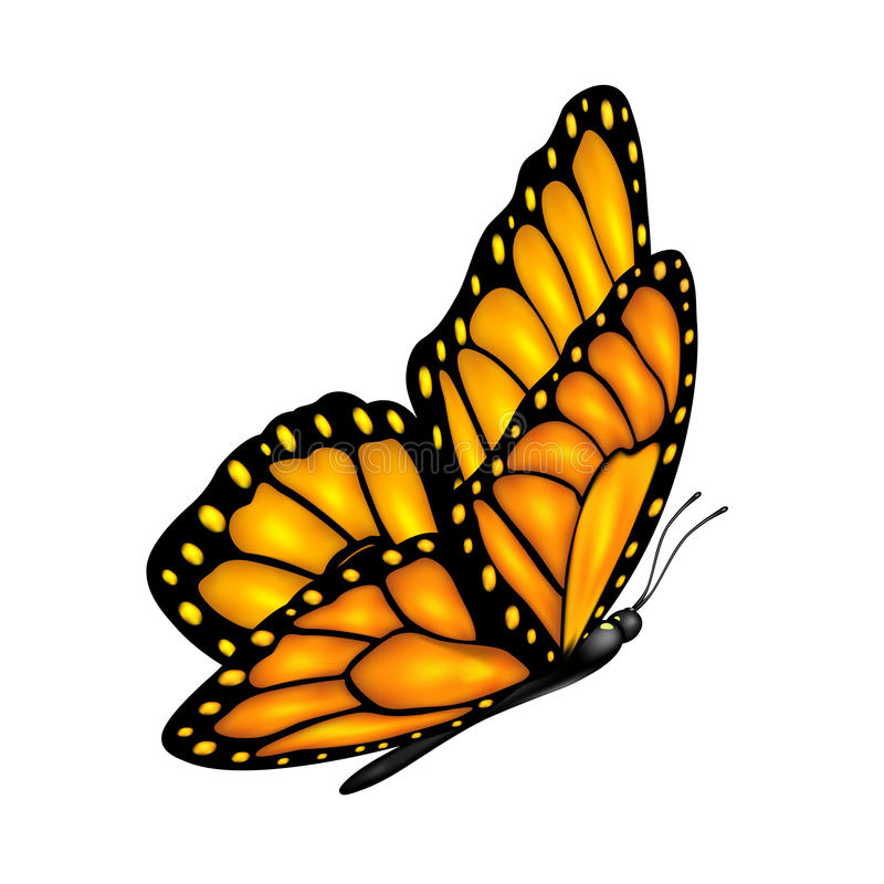 Farfalla di volo illustrazione di stock
