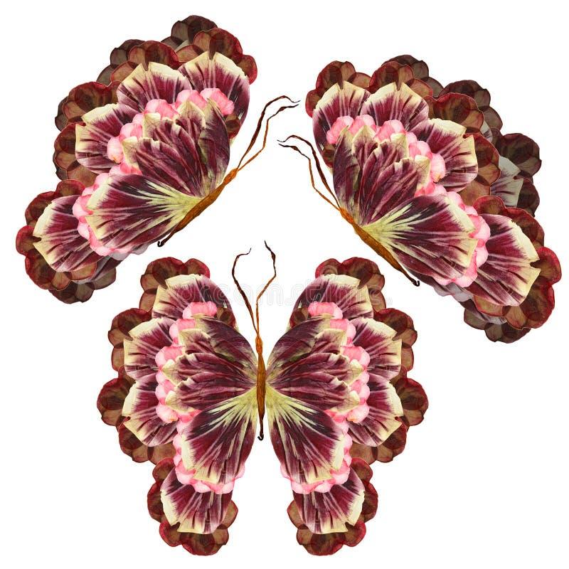 Farfalla floreale fatta dei fiori fotografia stock libera da diritti
