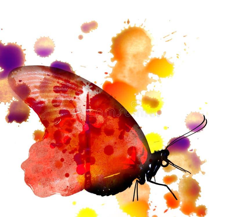 Farfalla - immagine degli acquerelli royalty illustrazione gratis
