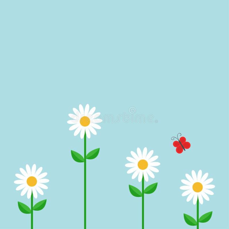 farfalla rossa Insieme della camomilla della margherita bianca Pianta crescente sveglia del fiore Scheda di amore Icona della cam illustrazione vettoriale