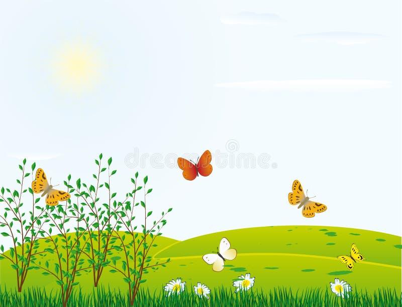 Farfalla su un gmeadow illustrazione di stock
