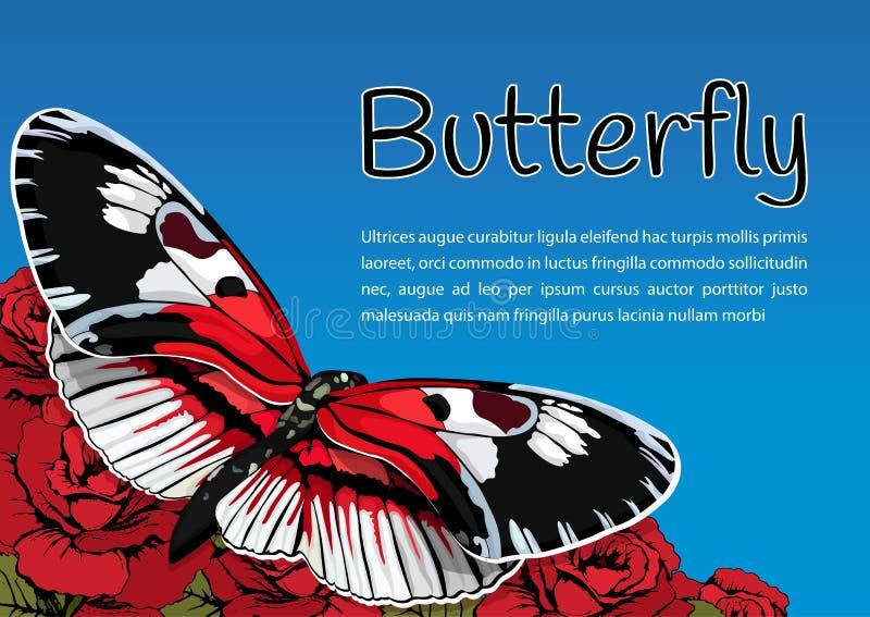 Farfalla sui fiori delle rose rosse su un fondo e su uno spazio del cielo blu per testo, insegna di vettore, carta, manifesto, al illustrazione vettoriale