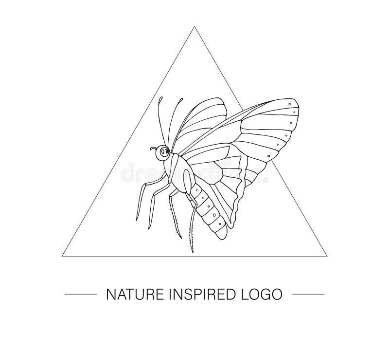 Farfalla tropicale disegnata a mano di vettore in un triangolo royalty illustrazione gratis