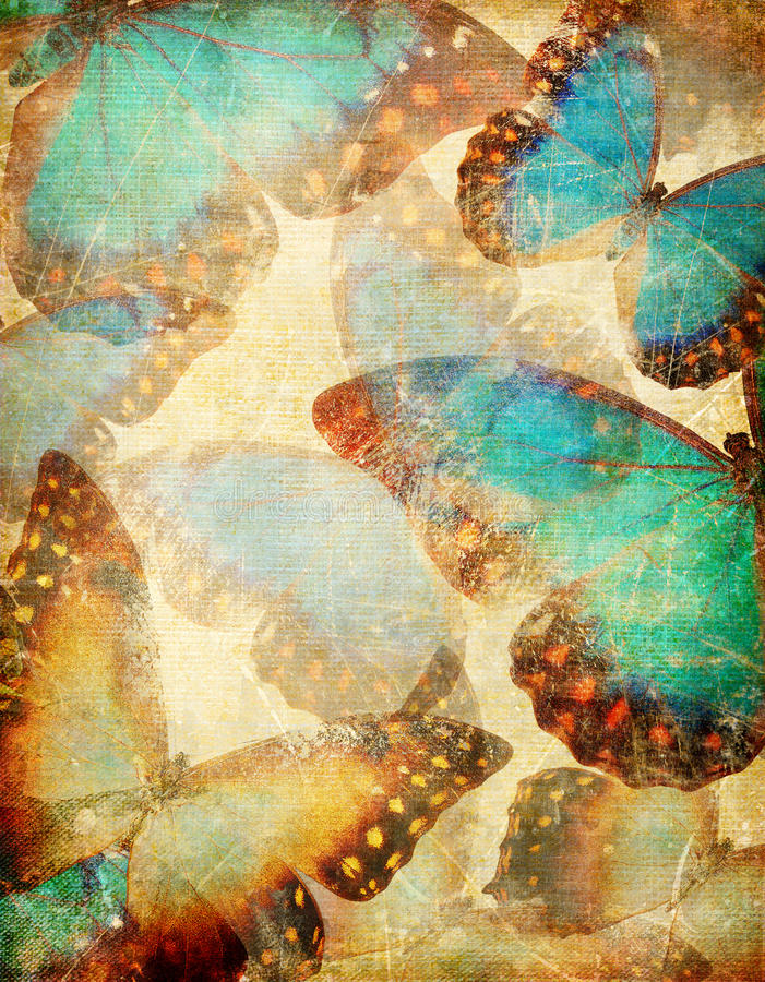 Farfalle dell'annata illustrazione vettoriale